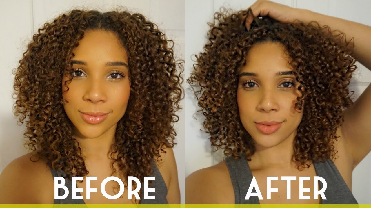 Curly Haircut + Curl Tips From My Hair Stylist | All Things Ada throughout Haircut Salon For Curly Hair