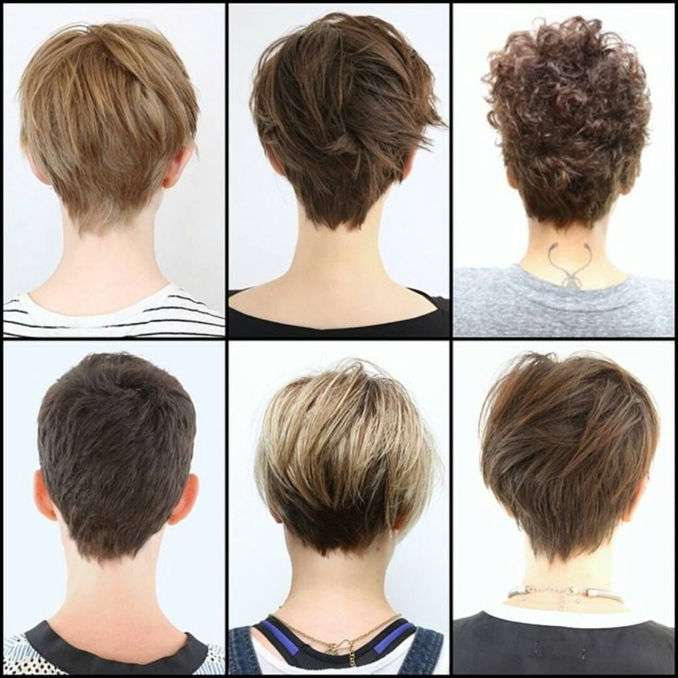 Image Result For Pixie Cuts Front And Back Views | Pixie Cuts with regard to Short Haircuts For Thin Hair Back View