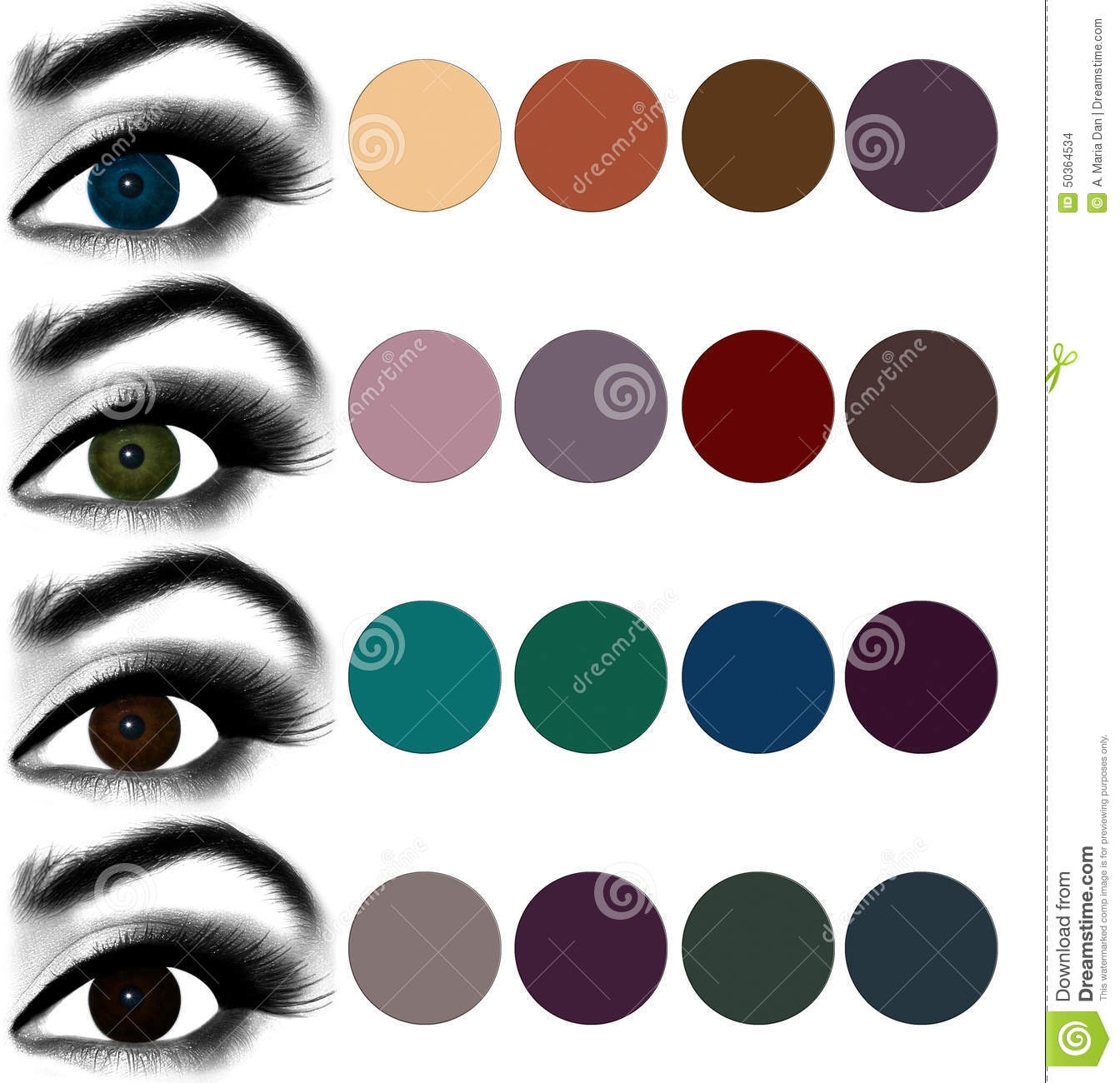 Eyes Makeup.matching Eyeshadow To Eye Color. Stock Illustration in Eyeshadow Color For Green Brown Eyes