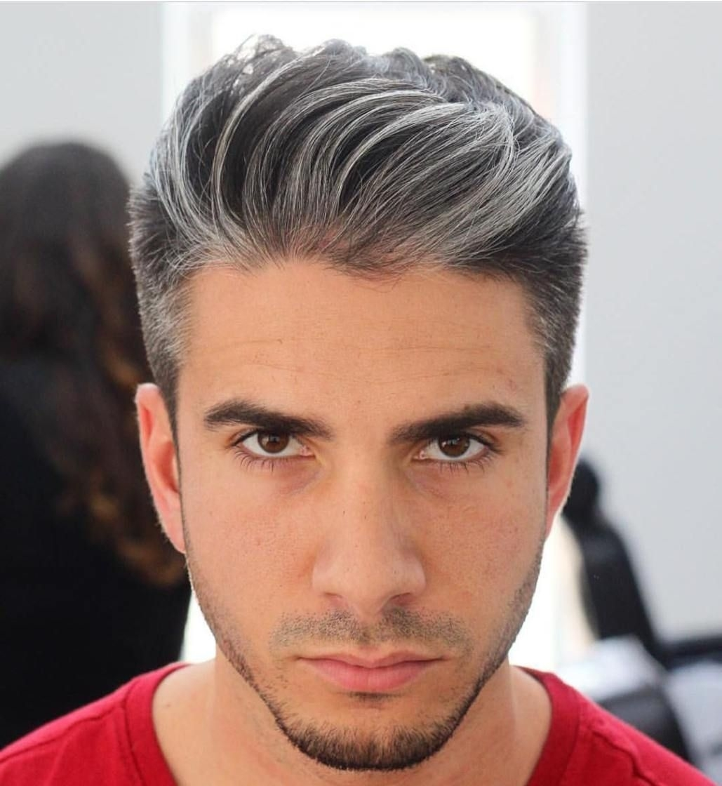 Brushed Back Salt And Pepper Hairstyle | Cool Men's Hairstyles in Salt And Pepper Hairstyle