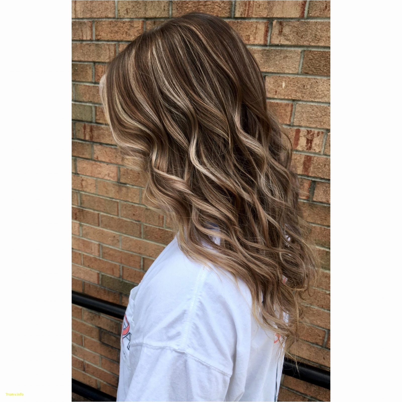 Balayage Highlights Asian Hair Best Of How To Properly Fill Blonde with Premier Asian Hair With Blonde Highlights