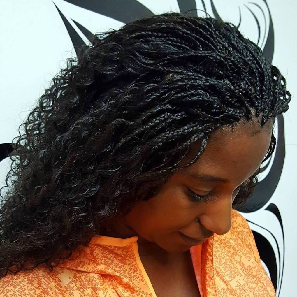 40 Ideas Of Micro Braids And Invisible Braids Hairstyles regarding Box Braids With Wet And Wavy Hair