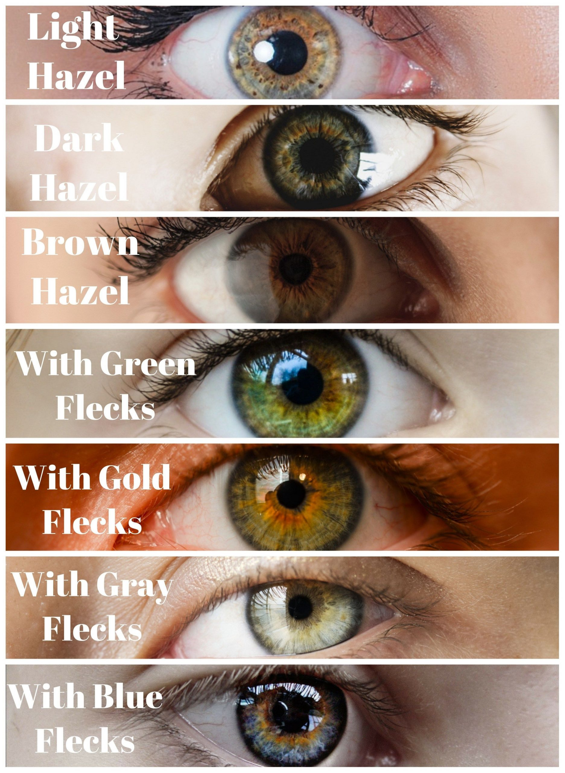 What Is The Best Hair Color For Hazel Eyes | Hazel Green with regard to Best Eyeshadow For Hazel Eyes And Gray Hair